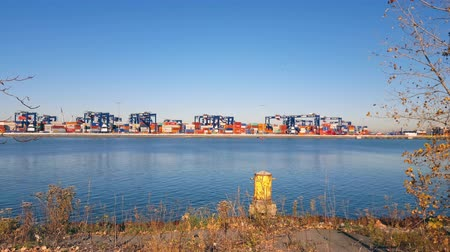 shipping : Shipping Containers movement at Port Yard Time Lapse 4K