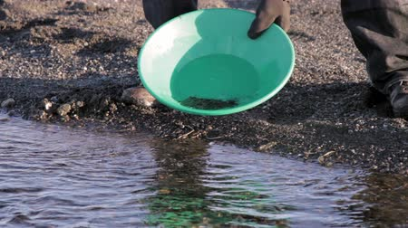 bringing home the bacon : Prospector Gold Panning