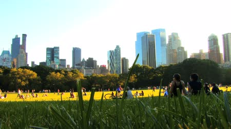 locatie : Central Park Afternoon HD Stockvideo