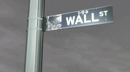 rendered : Different Seasons at Wall Street Sign Climate HD Stock Footage