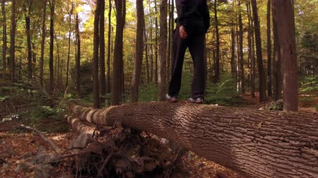 Teenager Guy walking across a fallen tree in the Forest 4K