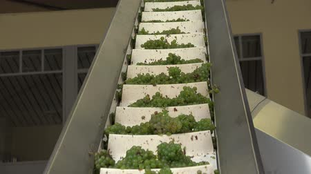 semillon : Fast winding stairway to the Press