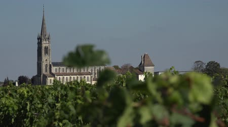 borgonha : the bell tower of Pomerol town