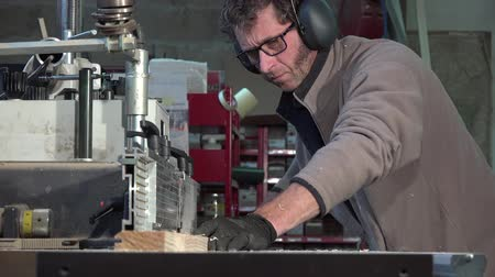 paneling : machining a pine board to the moulder