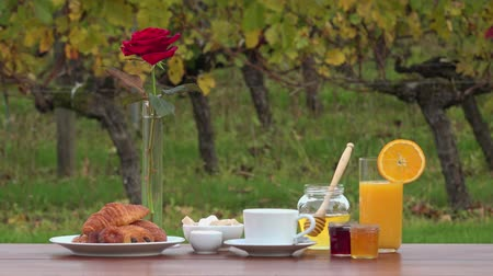 yaldız : French breakfast on vineyards background