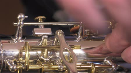 clarinet : Placing of key rod alto saxophone Stock Footage
