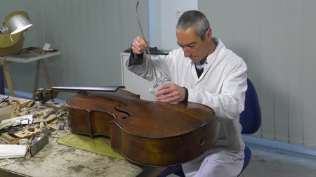 pétala : luthier Positions cello soul