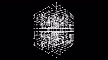 çerçeveler : Wireframe polygonal element. Stok Video