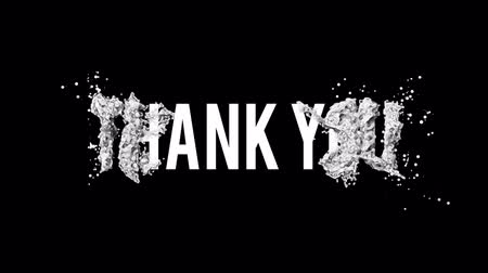 holidays : Thank you motion poster, banner text. Available in FullHD video render footage