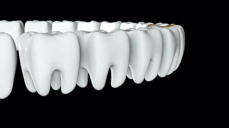 dent : Golden tooth in a row of the white teeth. 3D render. Dental, out of crowd, business concept. Video available in FullHD and HD render footage Stock Footage