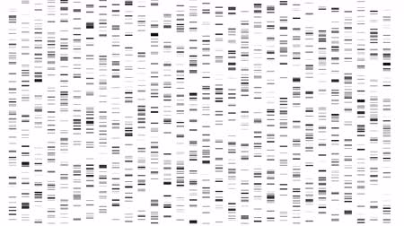 Big Genomic Data Visualization - DNA Test, Barcoding, Genome Map Architecture. Available in 4K video render animation footage. Стоковые видеозаписи