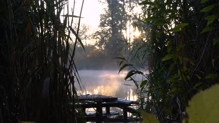 fisher : Sunrise on the riverbank. Landscape with wooden fisher bridge, reeds and smoke on the water
