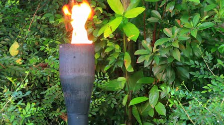 meşale : Decorative torch blazing in the jungle of the Singapore.