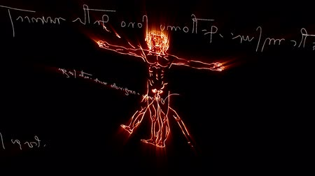 anatomia : This animation is inspired by Leonardo Da Vincis The Vitruvian Man - Vitruvius and mirror writing  Handdrawn animation moving in 3D space Vídeos