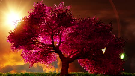 fantasia : Cartoon rendering 3D misteriosa Cherry Blossoms giardino giapponese
