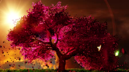 bloesemboom : Mysterieuze Cherry Blossoms Japanse Tuin cartoony 3D render Stockvideo