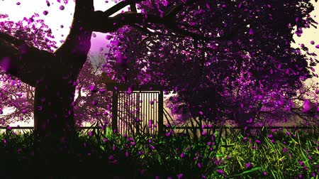 jardim : Mysterious Cherry Blossoms Japanese Garden cartoony 3D render Vídeos