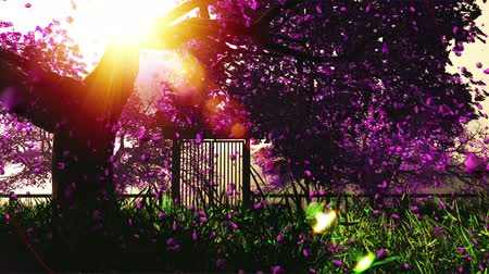 tündér : Mysterious Cherry Blossoms Japanese Garden cartoony 3D render Stock mozgókép