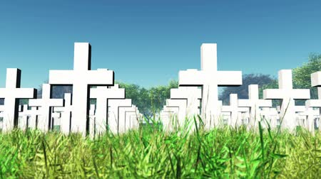 temető : Military Cemetery 3D render animation Stock mozgókép