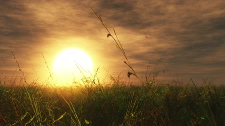 emekli : Sunset Sunrise Meadow 3D render