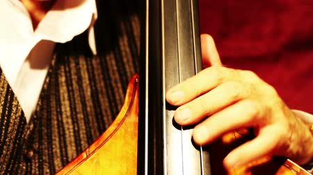 джаз : Musician and Double Bass playing jazz tilts