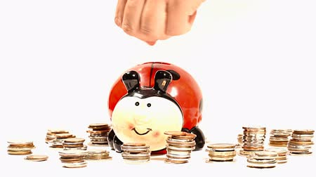 tempo : Putting Money into Ladybug Money Box and Coins