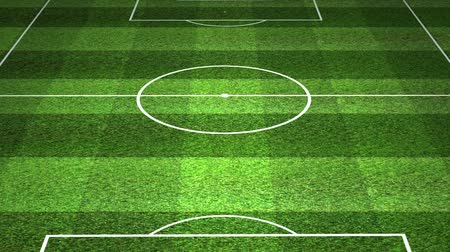 zift : Soccer field with slightly flickering light design. Stok Video