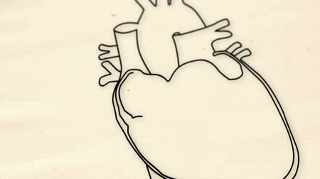 veia : Human Heart structure animation illustration  Shallow Depth of Field Film Shot Design