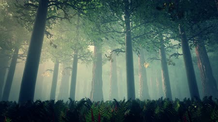 brujas : Render Deep Forest 2 Escena del cuento de hadas 3D Archivo de Video