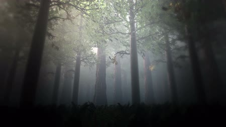 духи : Deep Forest 4 Fairy Tale Scene 3D render