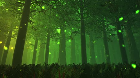 deep forest : Deep Forest Fairy Tale Scene 7 Fireflies 3D render Stock Footage