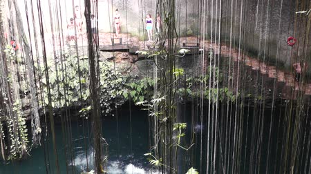 kalkstein : Dzonot Dzitnup Cenote in Yucatan in Quintana Roo Videos