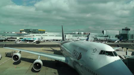 gates : Frankfurt International Airport Germany