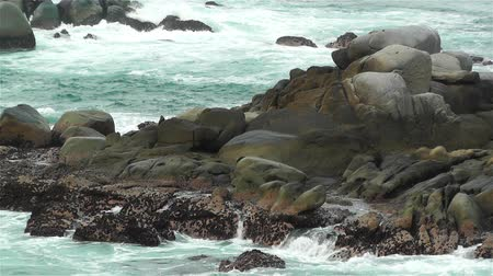 oceano : Ocean Waves on Rocky Shore