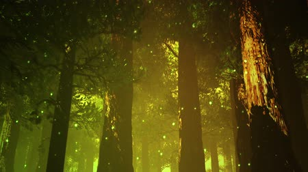 fireflies : Magic Deep Forest Fairy Tale Scene 3D artwork