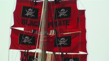 pirat : Pirate Flags on Ship