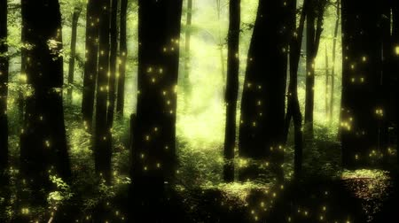 vila : 4K Fairy Tale Magic Forest - Fantasy Deep Woods with Fireflies Dostupné videozáznamy
