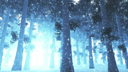 magical : Mysterious Northern Forest Winter Snowing 3D artwork animation Stock Footage