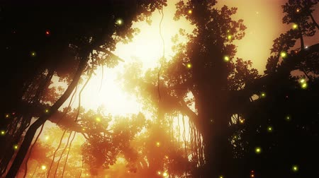 tündér : 4K Mysterious Fairy Tale Fantasy Deep Jungle with Fireflies in the Sunset Sunrise 3D Animation Stock mozgókép