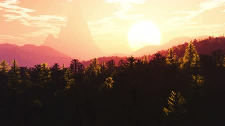 4K Mysterious Magic Forest Zonsondergang Zonsopgang met Smooth Camera Motion 3D Animatie