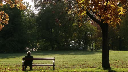 запомнить : 4K Elder  Senior Women Sitting and Relaxing on a Bench in a Beautiful Autumn Fall Park Стоковые видеозаписи
