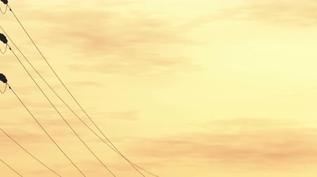 consumo energia : 4K High Voltage Electric Poles System in the Sunset Sunrise 3D Animation 9 fl
