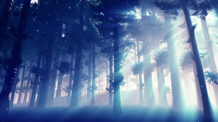 deep forest : Mysterious Fairy Tale Magic Deep Forest with Lightrays and Fireflies 2