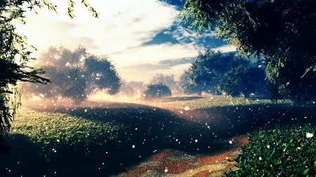 país das maravilhas : Amazing Natural Wonderland with Fireflies in the Sunset Sunrise 3D Animation with cinematic camera motion