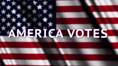 político : 4K America Votes Presidential Election Insert Stock Footage