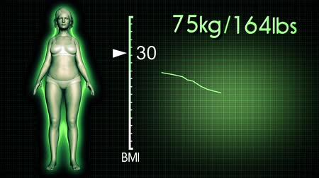 vékony : 4K Simulation of a Fat Woman Losing Body Weight and BMI Index Computer X-Ray Screen Design 3D Animation Stock mozgókép