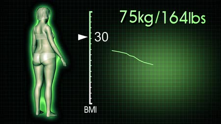 com escamas : 4K Simulation of a Fat Woman Losing Body Weight and BMI Index Computer X-Ray Screen Design 3D Animation Stock Footage