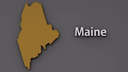 minimalizm : Maine USA State Shape and Title Minimal Design with Luma Matte included 4K 3D Animation Stok Video