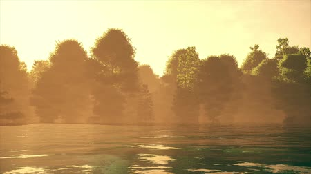 corrente : 4K High Current River Flood Forest in the Sunset Cinematic 3D Animation 1