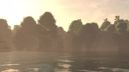 青々とした : 4K High Current River Flood Forest in the Sunset Cinematic 3D Animation Flat 動画素材